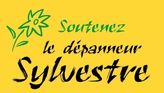 soutien-depanneur-sylvestre.jpg