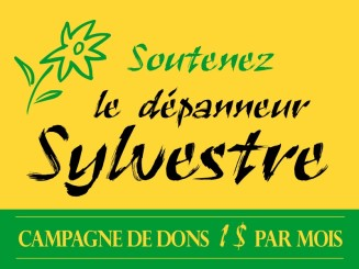 soutien-depanneur-sylvestre