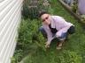 Je cueille des fines herbes!